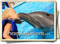 Child swimming with dolphin in Sharm
