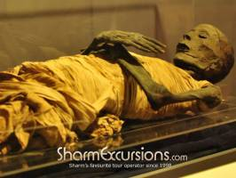 Egyptian Mummy at Cairo