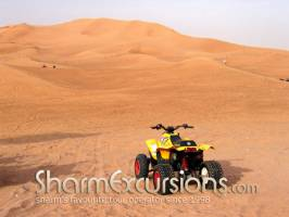 Quad Biking in Sharm Desert