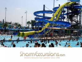 Sharm Curly Slides
