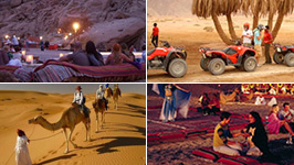 Sharm Desert Adventure - 5 Tours in 1