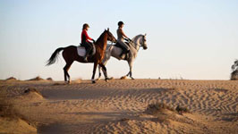 Question about Sharm Desert Horse Riding