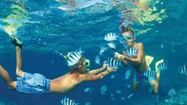Question about Ras Mohamed Or Tiran Island Snorkeling Trip By Boat